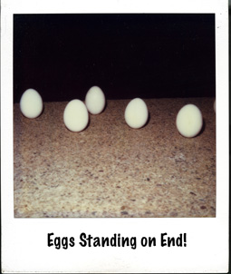 eggs-standing-on-end