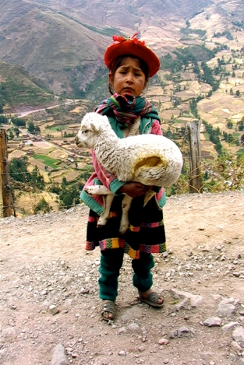 Child with Sheep, the Sacred Valley, Peru